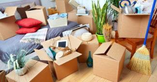 expert du déménagement